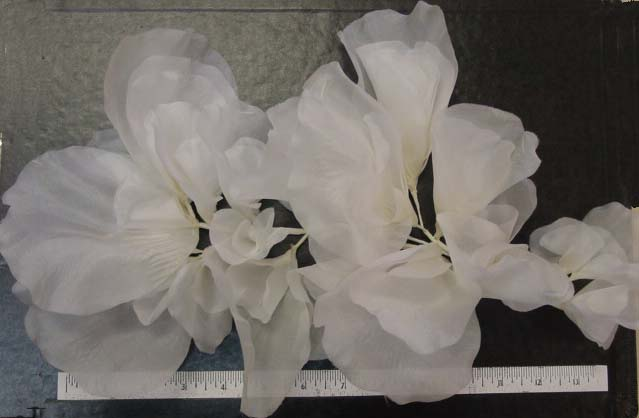 Browse fashion and millinery flower styles silk rose petal wreath 15 inches hat trim or bridal mightylinksfo